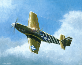 North American P-51A Mustang by DouglasCastleman