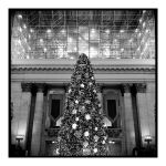 2017-343 The lights of Union Station by pearwood