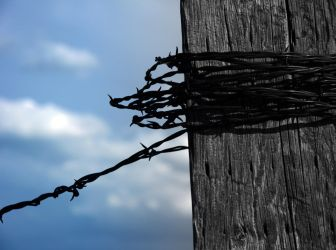 Barbed Wire by BookWeaver