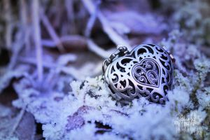 Cold Heart by PhotoCanon