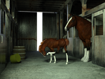 Horses4 by fractal2cry