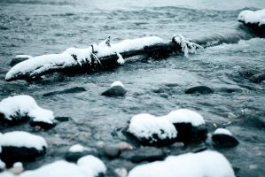 Cold 1 by alkapon