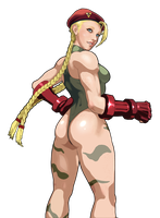 Cammy (cel shaded) by barakkka