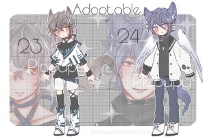 [Close]Adoptable #23-24[Auction] by plapupy