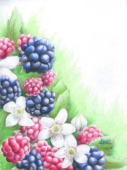 Blackberries by Jam1992