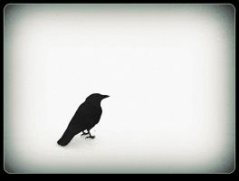 Lone Raven On The Snow by surrealistic-gloom