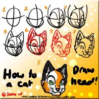 How to draw a cat head by Aspenfrost