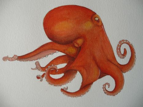 Octopus by Debstarr
