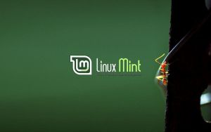 Wallpaper for Mint 18 by malvescardoso
