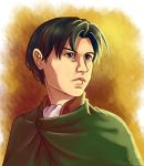 Levi / Rivaille by Adlynh