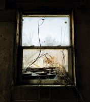 A View From A Window by nowhere-usa