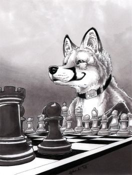 checkmate by AlphaKi