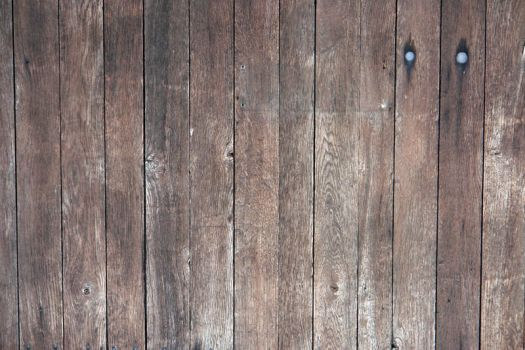 wood texture 01 by gd08