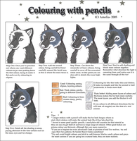 How to colour my way by amelia-