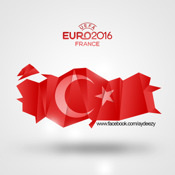 Turkey in Euro2016 by AY-Deezy