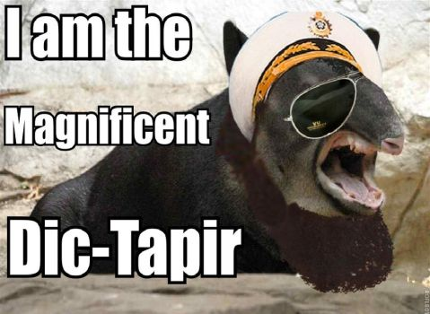 The Dic-Tapir by tarbano