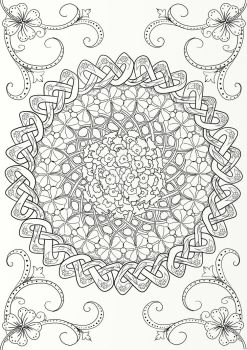 Australian Native Flower Mandala with Celtic Knot by LorraineKelly