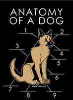 Anatomy Of A Dog (Draft) by artwork-tee