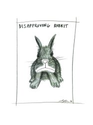 Disapproving Rabbit by Marc-Jager