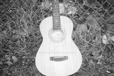 body of acoustic guitar by hooves-fly