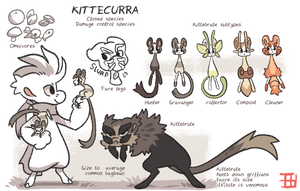 Quests Faunapedia - Kittecurra by griffsnuff