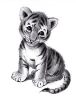 Tiger cub by zdrer456