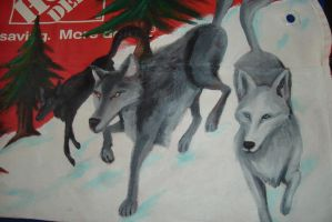 Wolves Closeup by EmilyCammisa