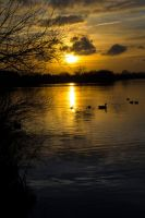 Fairlop Waters - 11. by LouHartphotography