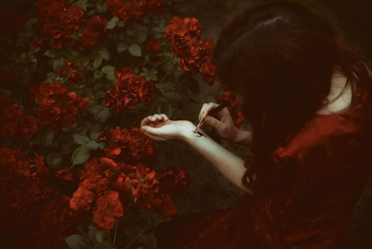 She paints the roses red by Econita