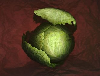 Cabbage No.1 by kparks