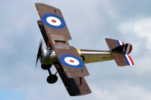 Sopwith Pup (Original) by Daniel-Wales-Images