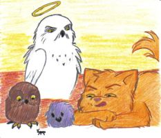 Hedwig is watching over by SpellCasting
