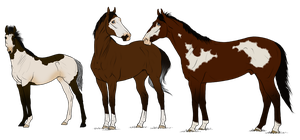 TB Family Adopt 12 *SOLD* by angry-horse-for-life