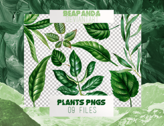 Renders 048 // Plants Pngs by BEAPANDA