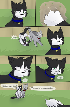 Bloodclan: The Next Chapter Page 260 by StudioFelidae