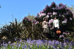 Blue Sky Blue Bell And Rhododendron Conspiracy by aegiandyad