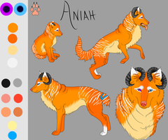 Aniah Reference Sheet by Kitkitshinigami