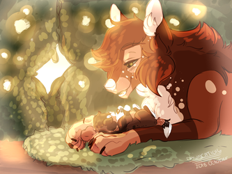 When the morning comes by XxDawnFluffyCatXx