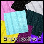 Simply Leather 2 DS Freebie by nemain-ravenwood