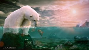 Polar bear by Jankristoff