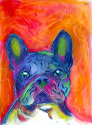 French Bulldog (Top 15 dog breeds) by JulieRaven