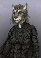 N'asska the khajiit by ronnie92