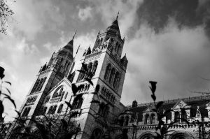 National History Museum by abhenna
