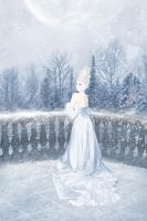 The Heart of Winter by LaVolpeCimina