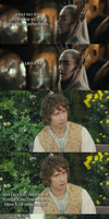 The Hobbit - Legolas vs. Bilbo by yourparodies