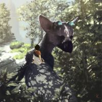 The Last Guardian by HGW27