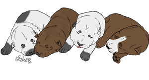 Pitbull puppy adoptables VERY CHEAP -CLOSED- by IceWolfBaby