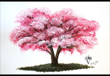 Cherry Blossom Tree in Acrylics. by PandiiVan