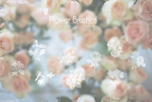 Flower Brushes~ by ponysalvaje1730