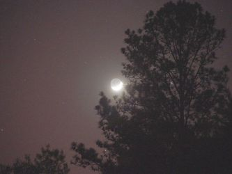The Moon by sirkus
